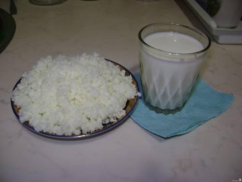 Молочный гриб – бесконечные полезные свойства и редкие противопоказания волшебного тибетского кефира - Грибы собираем